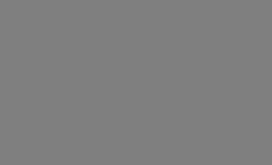 Imperium logo sivi